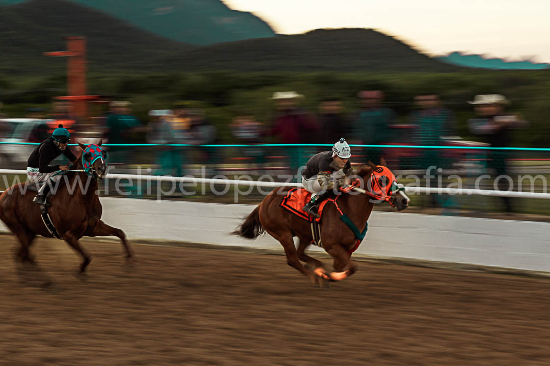 Fotografia carreras de caballos Cadereyta Jimenez Nuevo León México